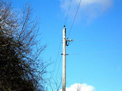 Singing Telephone Poles