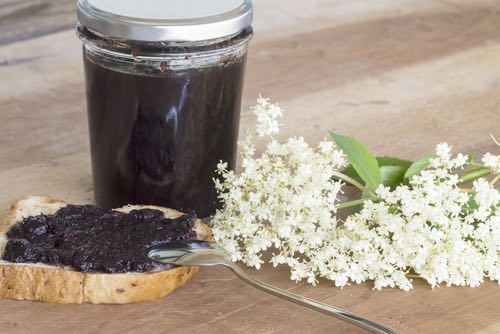 Elderberry Jame