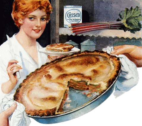 Vintage Homemade Rhubarb Pie Illustration 1918