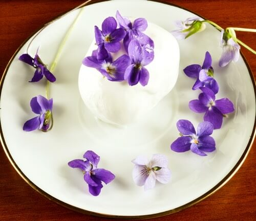 Serving of Ice Cream Decorated with Violets
