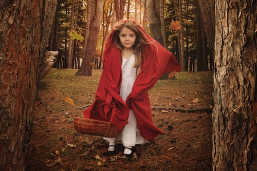 Little Red Riding Hood Being Watched by the Wolf
