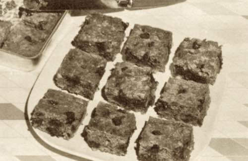 Chocolate Graham Squares
