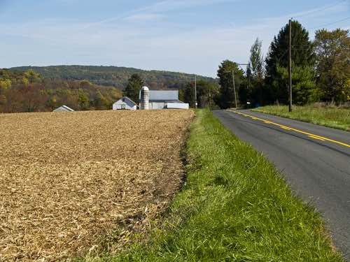 Roadside In Bucks Country, Pennsylvania