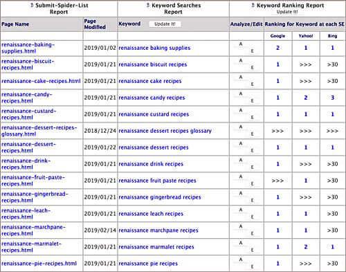 SBI Keyword Ranking Report
