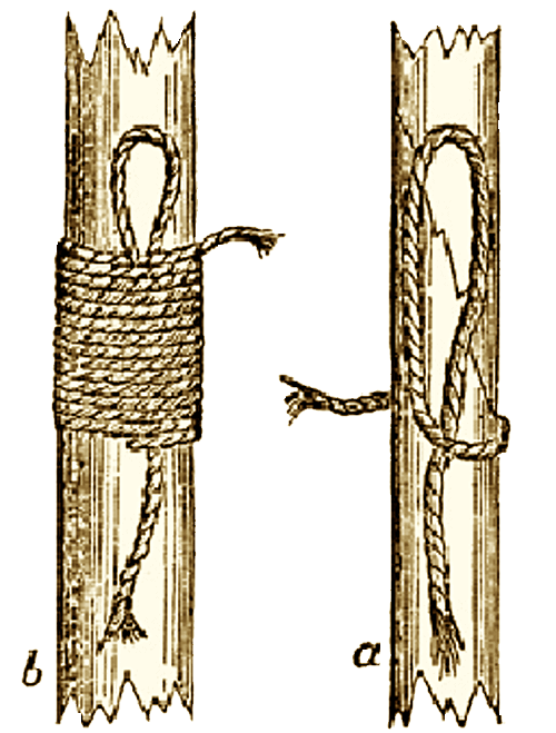 Illustration of the Binding Knot