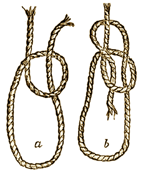 Illustration of a Bowline Knot