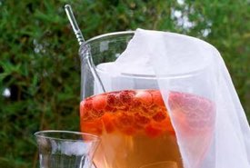 Raspberry Shrub Beverage