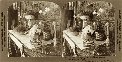Antique Stereoscopic Image