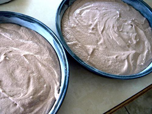 Cake Batter Ready for the Oven