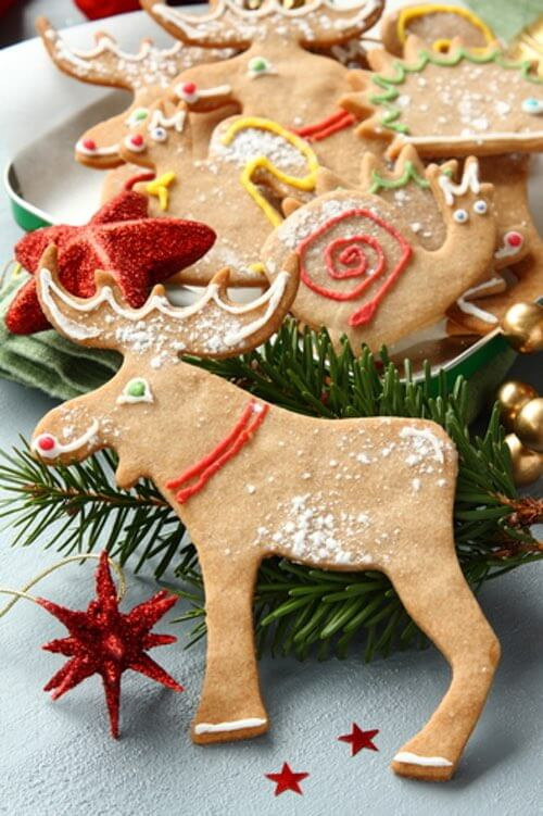 Christmas Gingerbread Animals