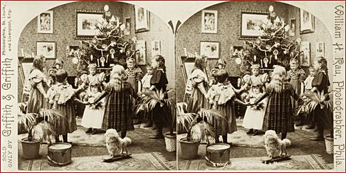 Antique Stereoscopic Image