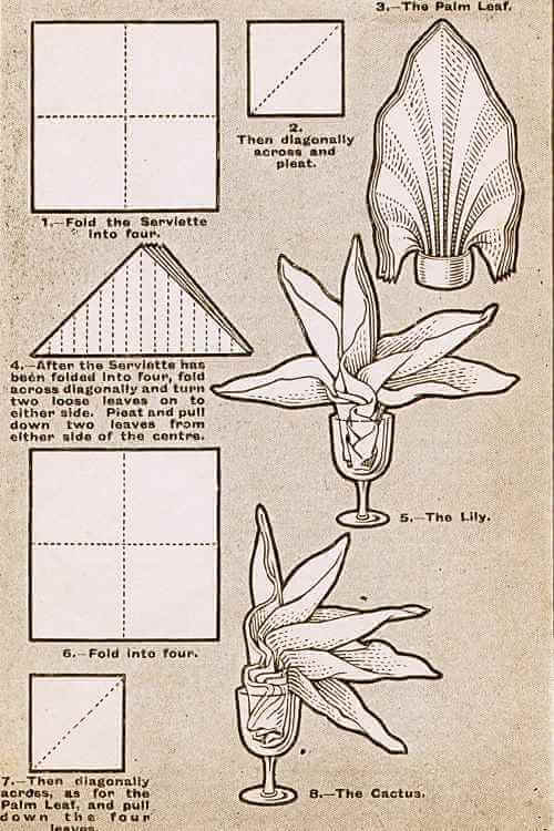 Illustrations For The Palm, The Lily, and The Cactus Napkin Folding Technique