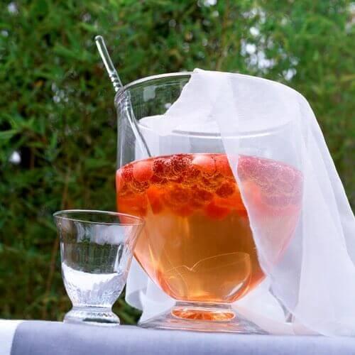 Raspberry Shrub Beverage