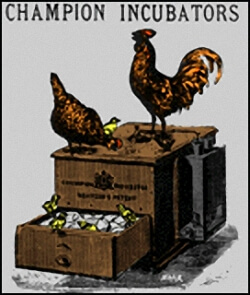 Vintage Poster Illustrating an Old Time Egg Incubator